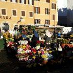 Highlights of Rome, Campo de' Fiori